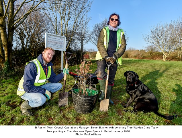 The Meadows Tree Planting